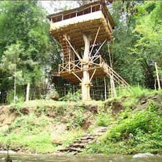Safari Land Resorts (28 Kms from Ooty), Masinagudi